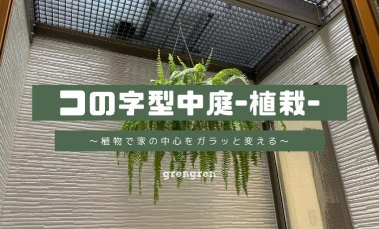 中庭に植物をぶら下げる