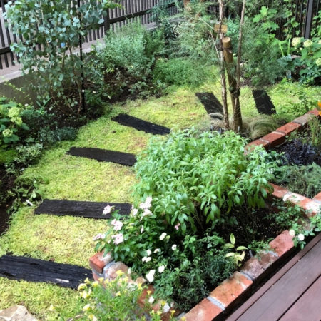 世田谷区の個人邸のナチュラルガーデンの庭づくり
