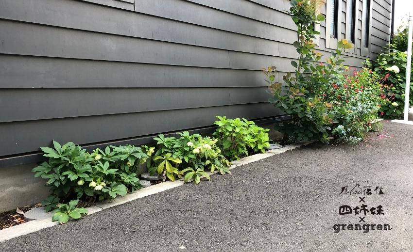 四姉妹が庭づくりをする前の八王子ガーデン
