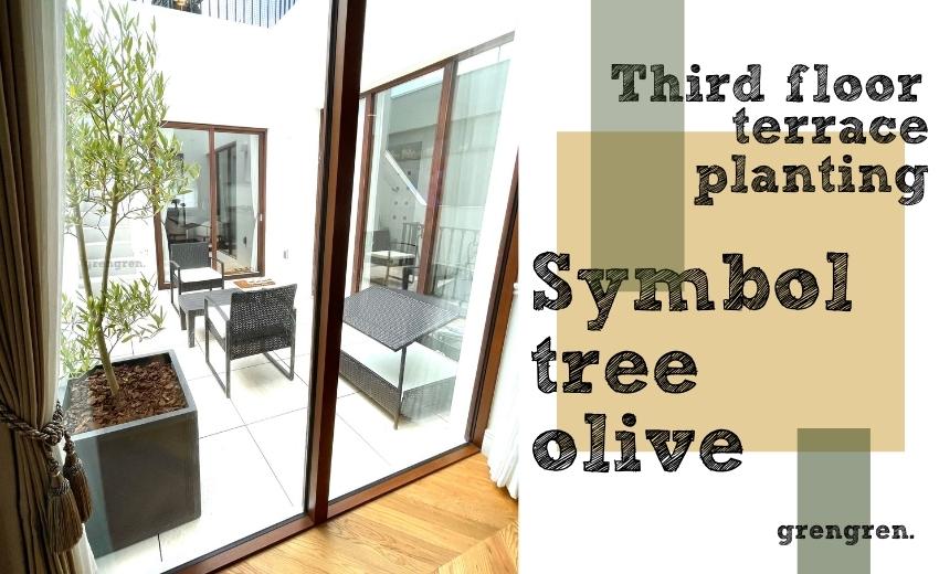個人邸三階のテラスに植栽したオリーブのシンボルツリー
