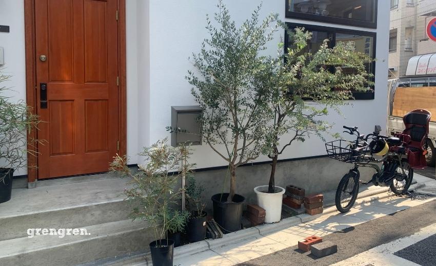 施工する予定のレンガ花壇に植えこむため準備されていた樹木と植物たち