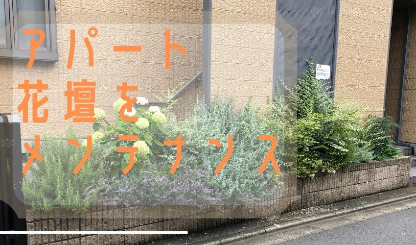 アパート植栽管理