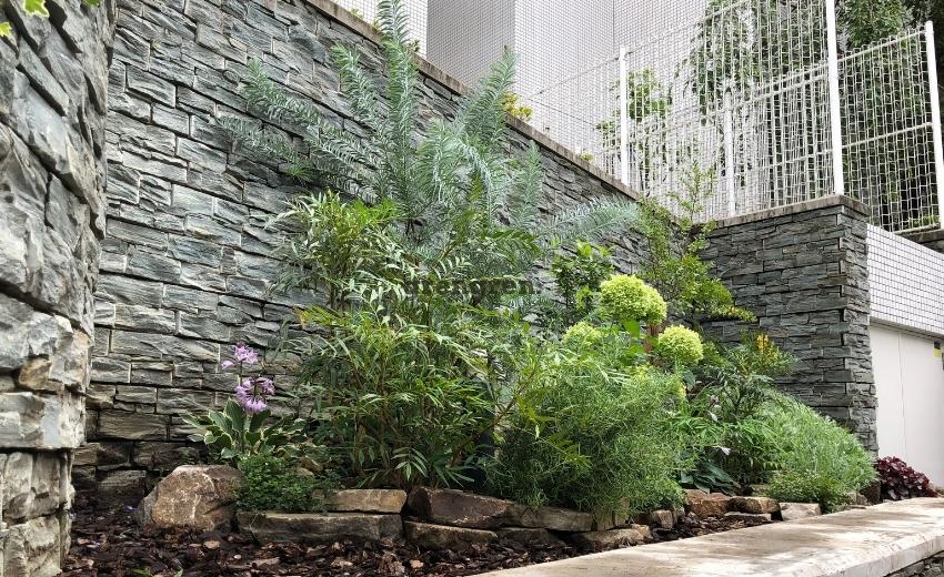 2021年7月に管理に入った世田谷マンションの花壇の整備施工後の様子
