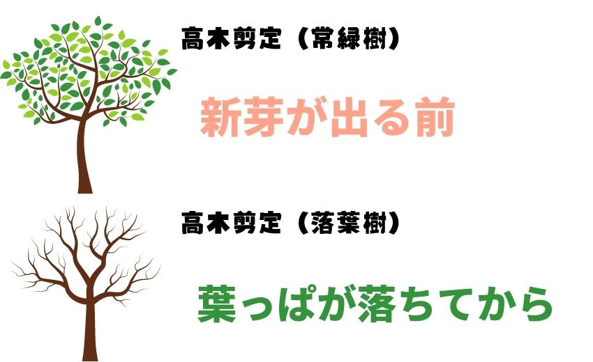 高木剪定の基本