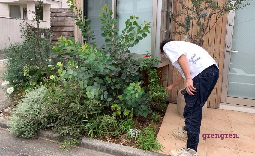 花壇のメンテナンスのための調査