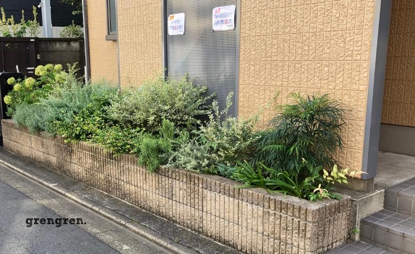夏の長雨で成長が著しい世田谷区のマンション花壇