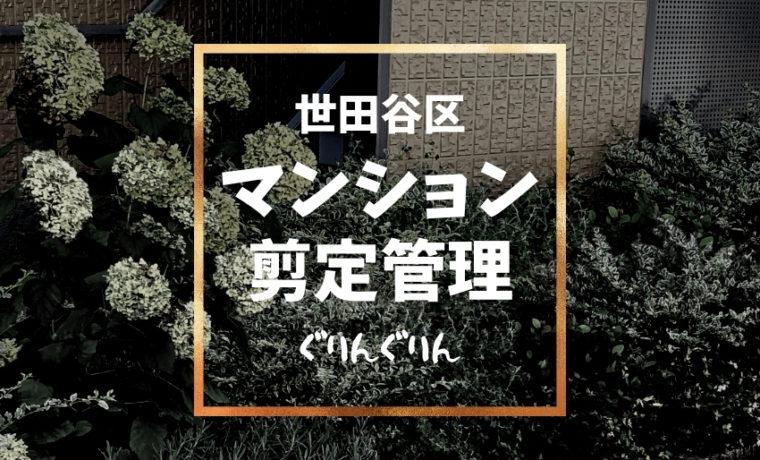 世田谷区のマンションで一ヶ月に一回剪定管理している花壇にアジュガを植栽
