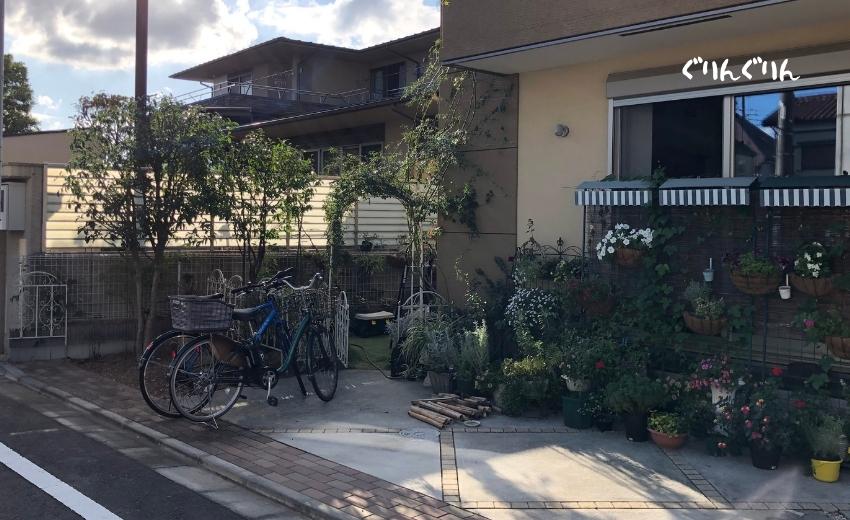 琉球アサガオとキンモクセイを剪定した後の個人邸のお庭
